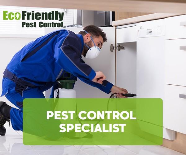 Pest Control Hilton