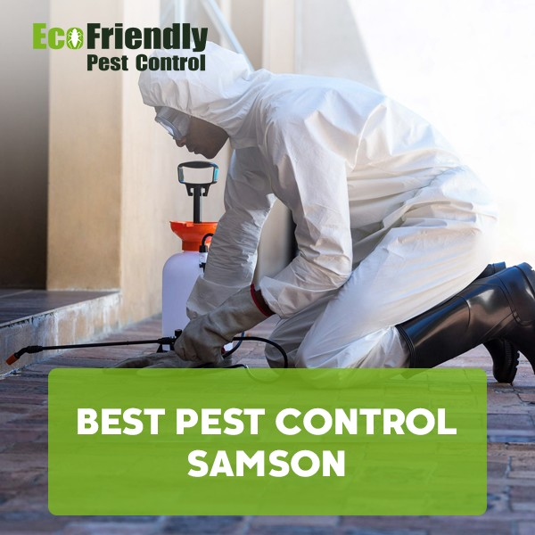 Best Pest Control Samson