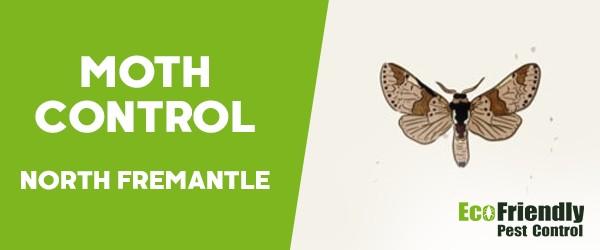 Moth Control  South Fremantle