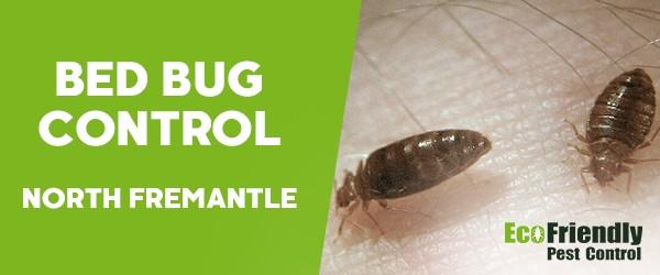 Bed Bug Control  South Fremantle