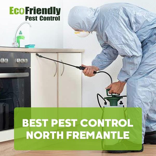 Best Pest Control  South Fremantle