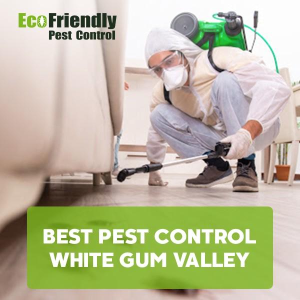Best Pest Control White Gum Valley