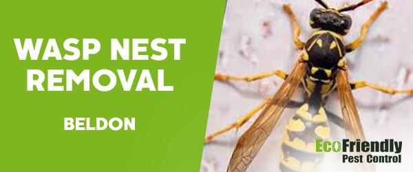 Wasp Nest Remvoal  Beldon