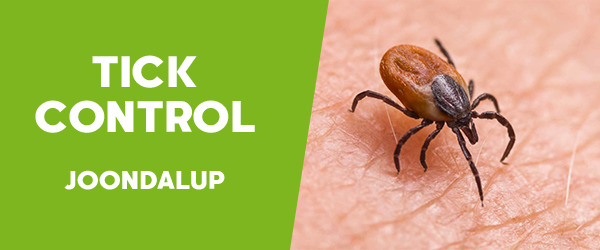 Ticks Control  Joondalup