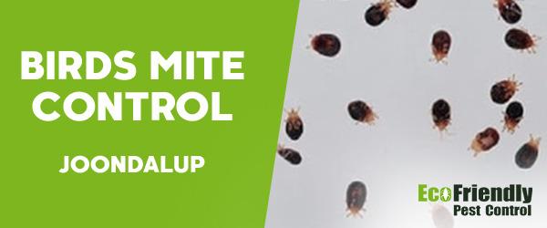 Bird Mite Control  Joondalup