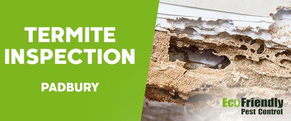 Termite Inspection  Padbury