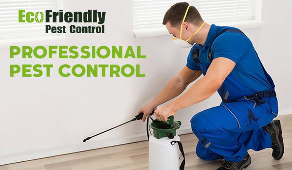 Pest Control Padbury