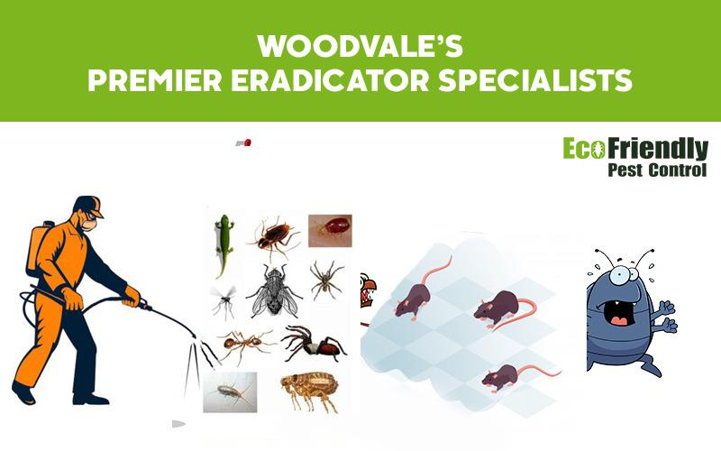 Pest Control Woodvale