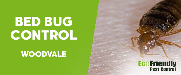 Bed Bug Control  Woodvale