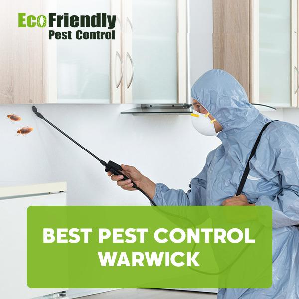 Best Pest Control Warwick