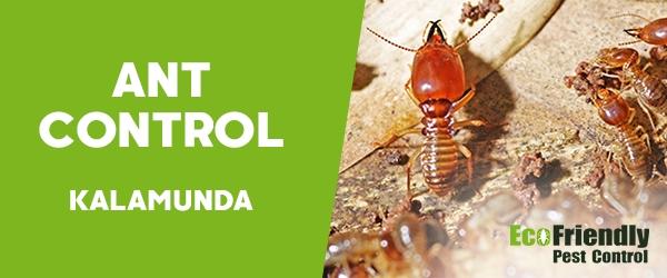 Ant Control  Kalamunda