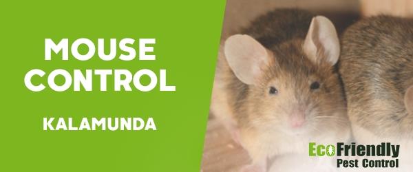 Mouse Control  Kalamunda