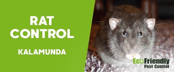 Rat Pest Control  Kalamunda
