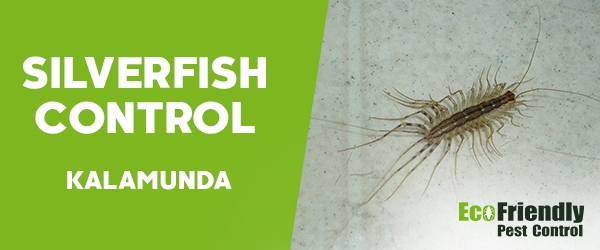 Silverfish Control  Kalamunda