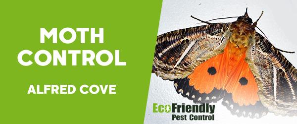 Moth Control Alfred Cove