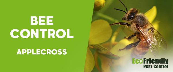 Bee Control Applecross