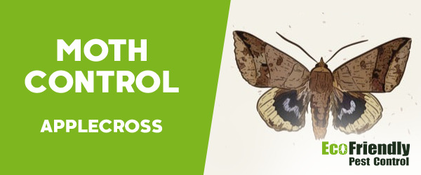 Moth Control Applecross