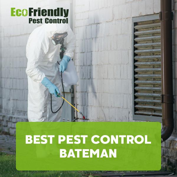 Best Pest Control Bateman