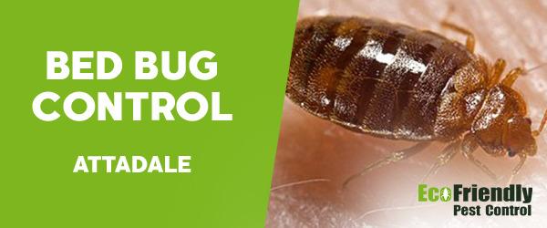 Bed Bug Control  Attadale