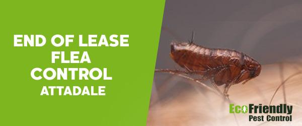 End of Lease Flea Control  Attadale