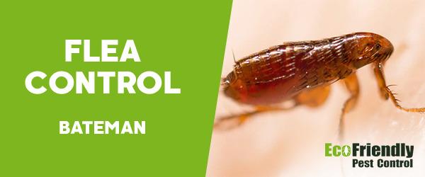 Fleas Control Bateman