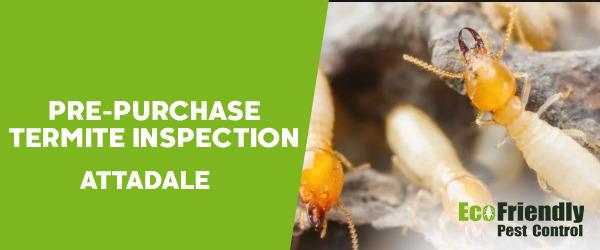 Pre-purchase Termite Inspection  Attadale