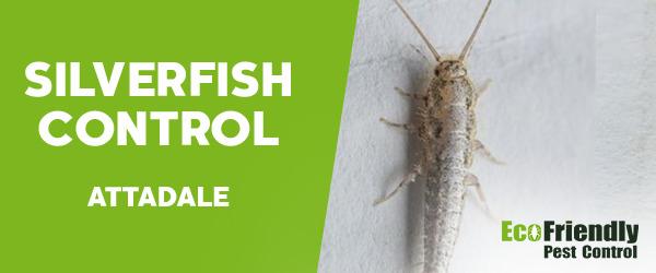 Silverfish Control  Attadale