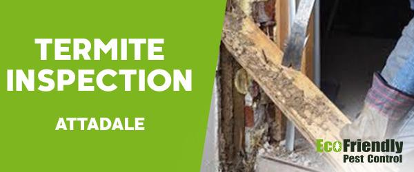 Termite Inspection  Attadale