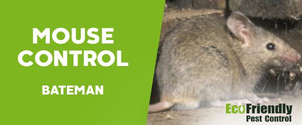Mouse Control Bateman