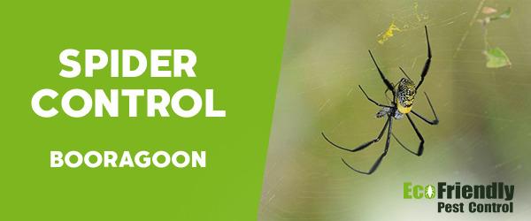 Pest Control Booragoon