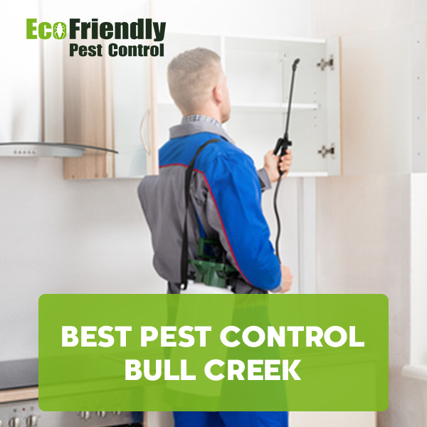 Best Pest Control Bull Creek