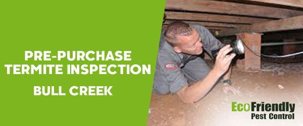 Pre-purchase Termite Inspection Bull Creek