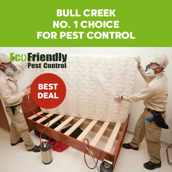 Pest Control Bull Creek