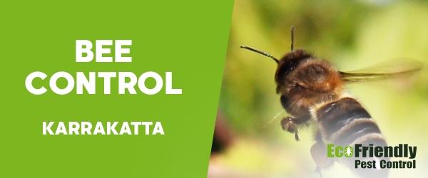 Bee Control Karrakatta