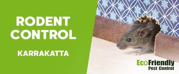 Rodent Treatment Karrakatta
