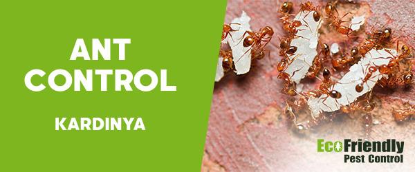 Ant Control Kardinya