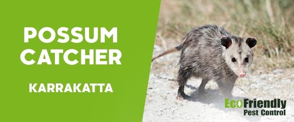 Possum Catcher Karrakatta