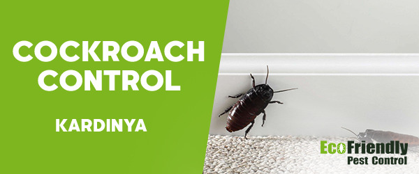 Cockroach Control Kardinya