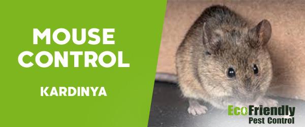 Mouse Control Kardinya