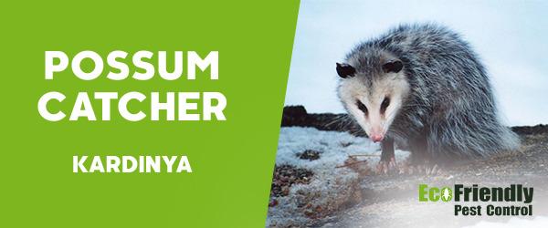Possum Catcher Kardinya