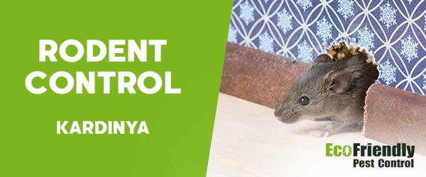 Rodent Treatment Kardinya