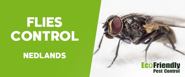 Flies Control  Nedlands