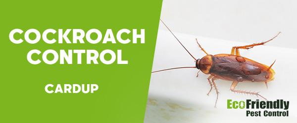 Cockroach Control Cardup