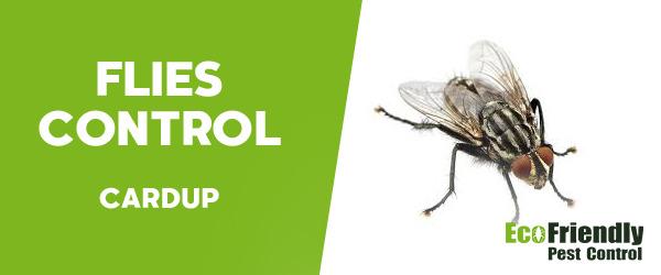 Flies Control Cardup