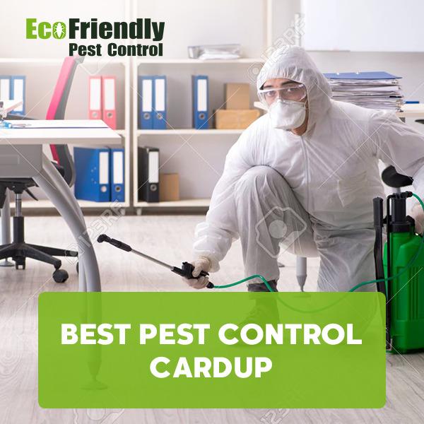 Best Pest Control Cardup