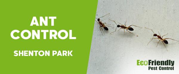 Ant Control Shenton Park
