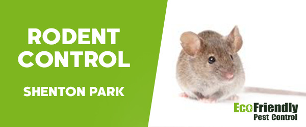 Rodent Treatment Shenton Park