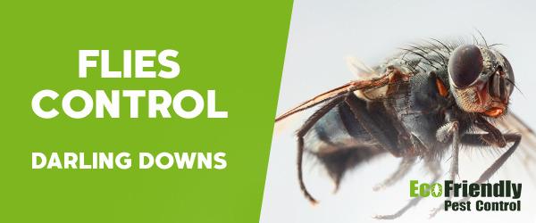 Flies Control Darling Downs