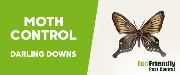 Moth Control Darling Downs