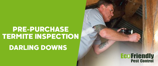 Pre-purchase Termite Inspection Darling Downs